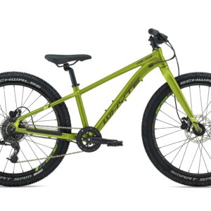 Whyte 303 2020