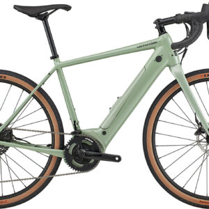 Cannondale Synapse Neo SE 650 2020
